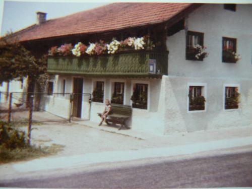 Unser Betrieb Im Jahr 1951